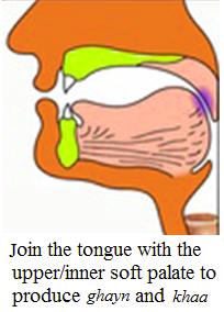 upper-throat tajweed rule