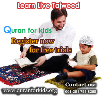 learn live tajweed Online