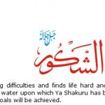 Allah name Al-shakro