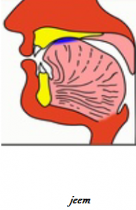 jeem Makharaj Articulation of Tongue